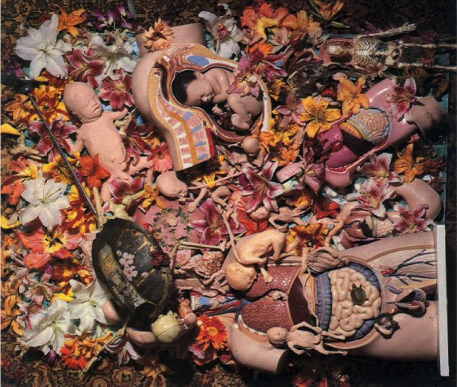 kurt_cobain_collage_photo_in_utero_back_cover_nirvana-copy